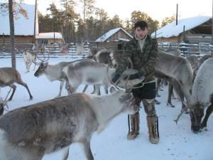 Khanty reindeer herder