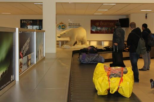 Svalbard_airport_polarbear
