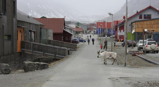 The northernmost downtown, Longyearbyen, photo: Anna Stammler-Gossmann