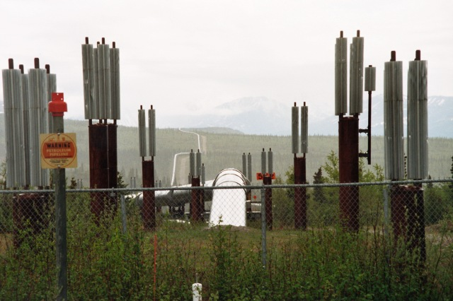 The Trans Alaska Pipeline System (TAPS), (Florian Stammler)