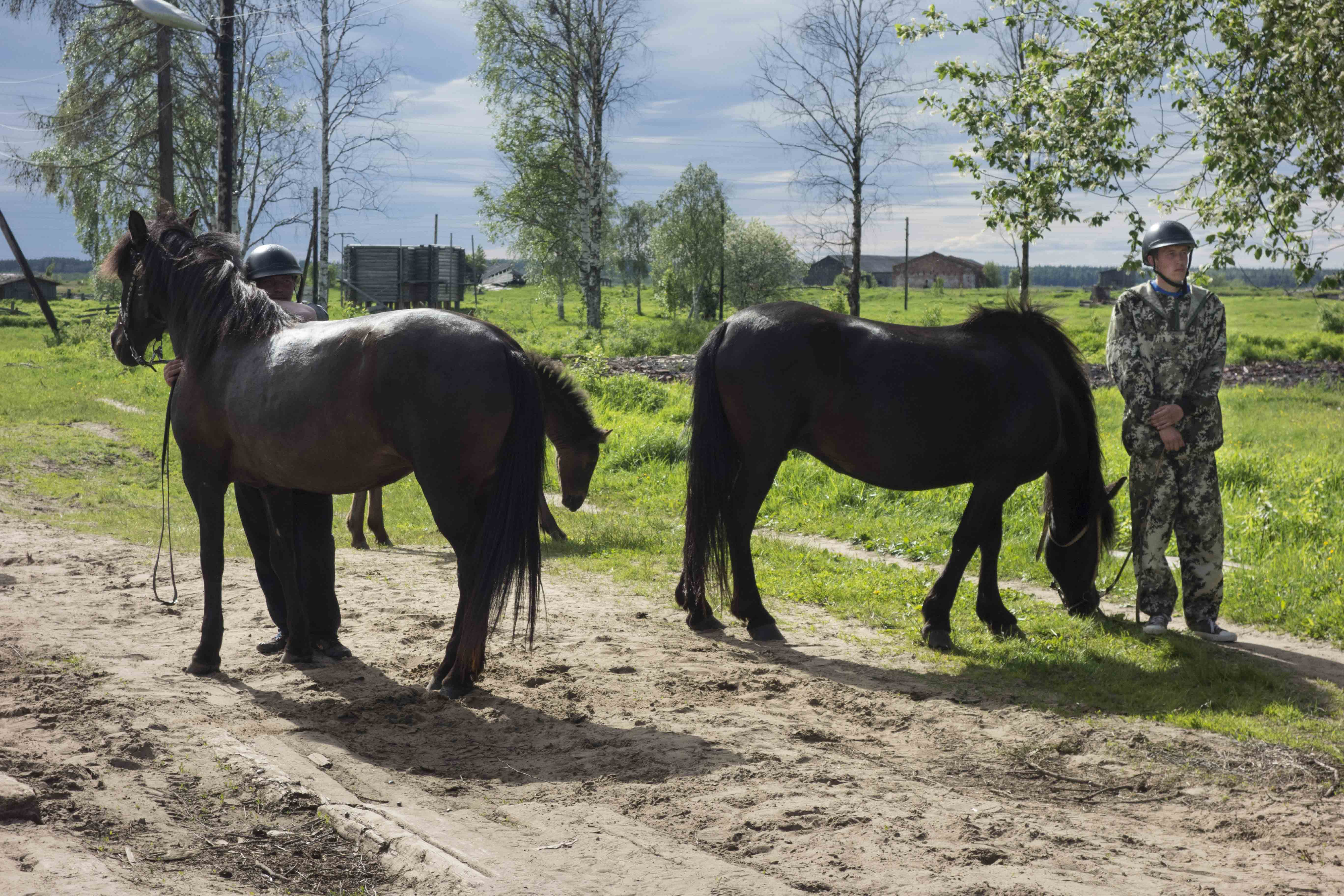 2018-06-22_Conference_Horse_Breeding_Mezen-9