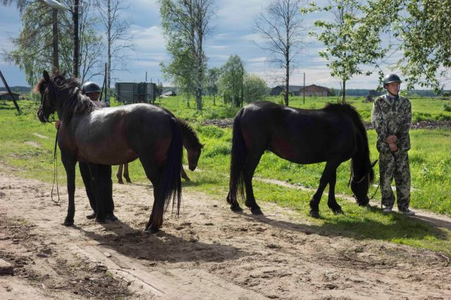 2018-06-22_Conference_Horse_Breeding_Mezen-9